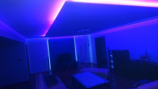 Wnętrze mieszkania 137